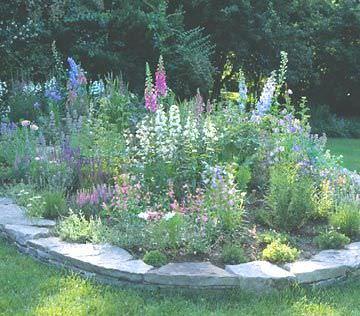Flores, plantas y arbustos