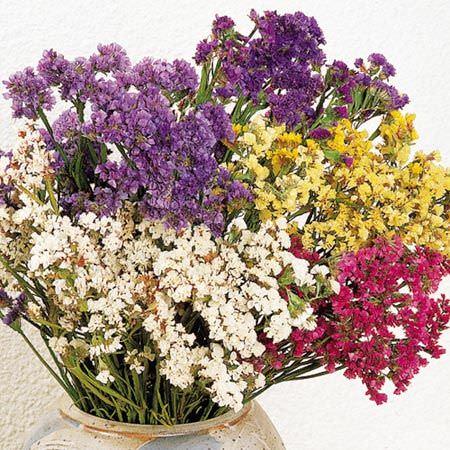 flores secas en un cesto