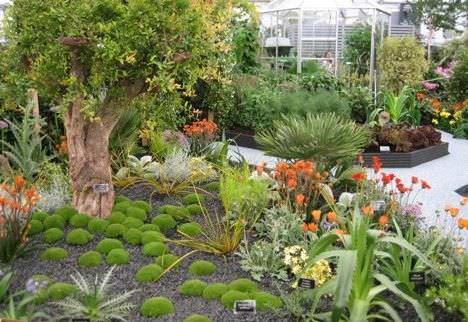 jardín sano