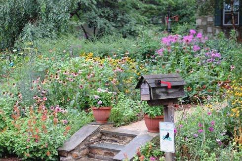 jardín silvestre
