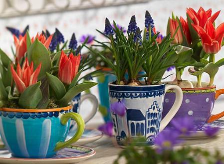Las flores mas bonitas para el color de interior1