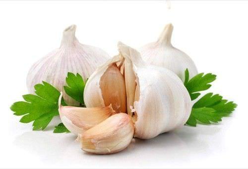 9 Beneficios medicinales del ajo