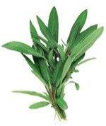 8 Hierbas medicinales que usted puede cultivar5
