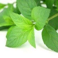 5 Remedios herbarios naturales que le beneficiaran en la vida diaria5