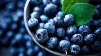 8 Alimentos contra el envejecimiento que debe comer9