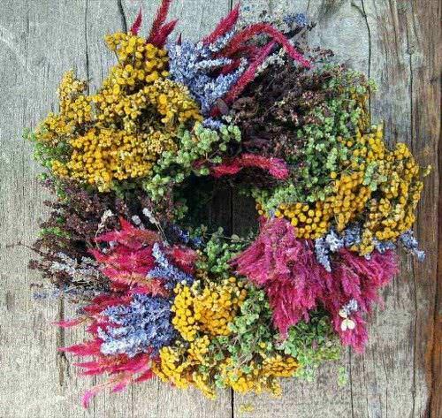 Tipos de flores para secar