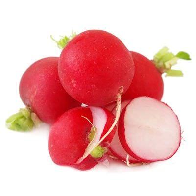 Beneficios de los Rabanos para Purificar la Sangre y los Rinones