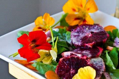 edible-flowers13