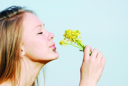 10 Alimentos que Combaten las Alergias de Primavera