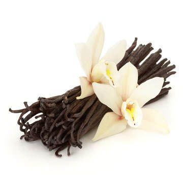 6 Usos Inusuales para el Extracto de Vanilla