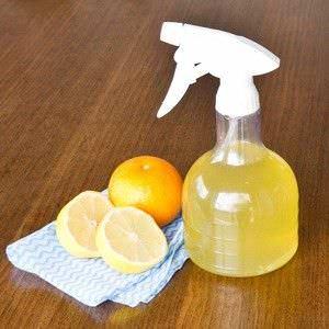 3 Limpiadores Esenciales Hechos en Casa para que su Cocina Brille4