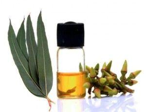 10 Remedios Caseros para la Congestion Nasal10