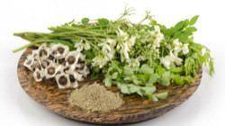 Beneficios de la Moringa para la Salud la Piel el Cabello4