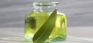 Beneficios Medicinales del Aceite Esencial de Eucalipto1