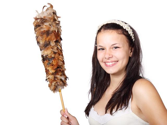 Limpie su casa de forma natural y económica.
