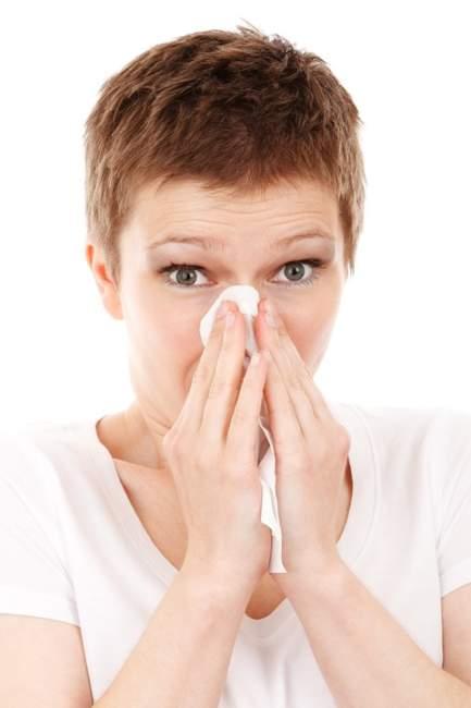 Antihistaminicos naturales para sus alergias de temporada